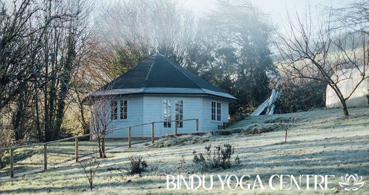 bindu yoga centre, devon