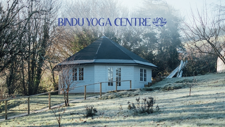 bindu-yoga-centre-header